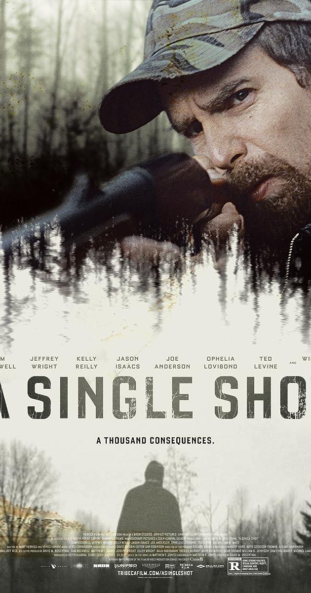 Subtitle of A Single Shot