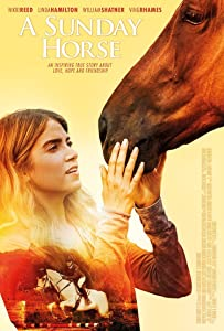 MP4 movie downloads hollywood A Sunday Horse USA [hd1080p]