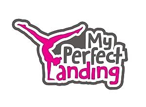 Where to stream My Perfect Landing