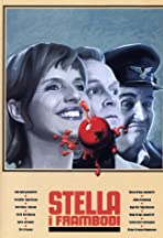 Stella for Office