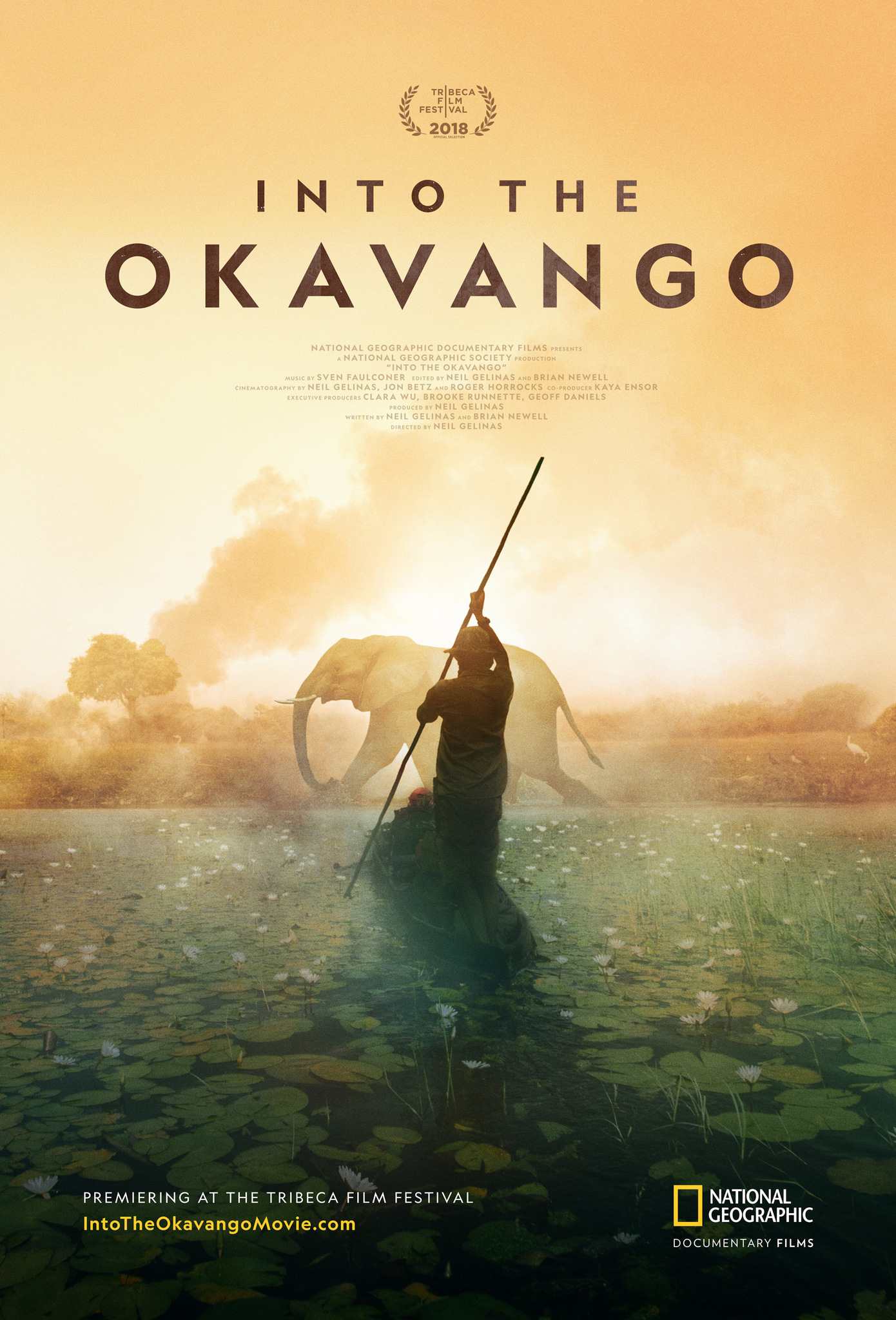 Into the Okavango (2018) - IMDb
