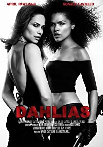 Dahlias: Wild Card full movie download in hindi