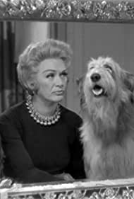 Eve Arden in My Three Sons (1960)