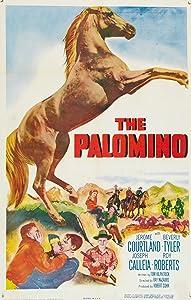 The Palomino USA