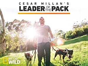 Where to stream Cesar Millan's Leader of the Pack