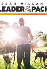 Cesar Millan's Leader of the Pack Poster