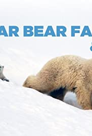 The Polar Bear Family and Me Poster
