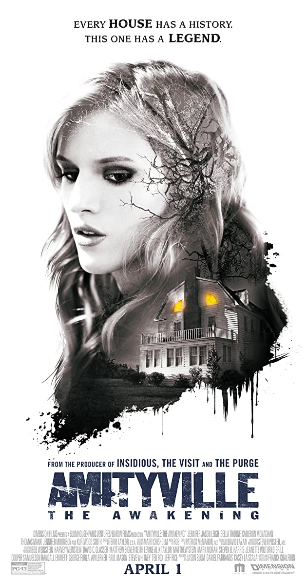 Subtitle of Amityville: The Awakening