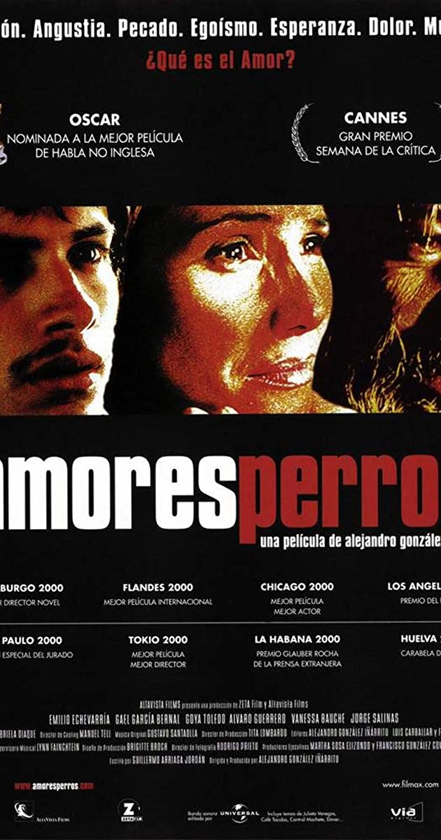 Subtitle of Amores Perros