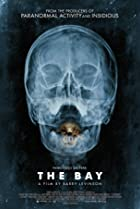 The Bay (2012) Poster