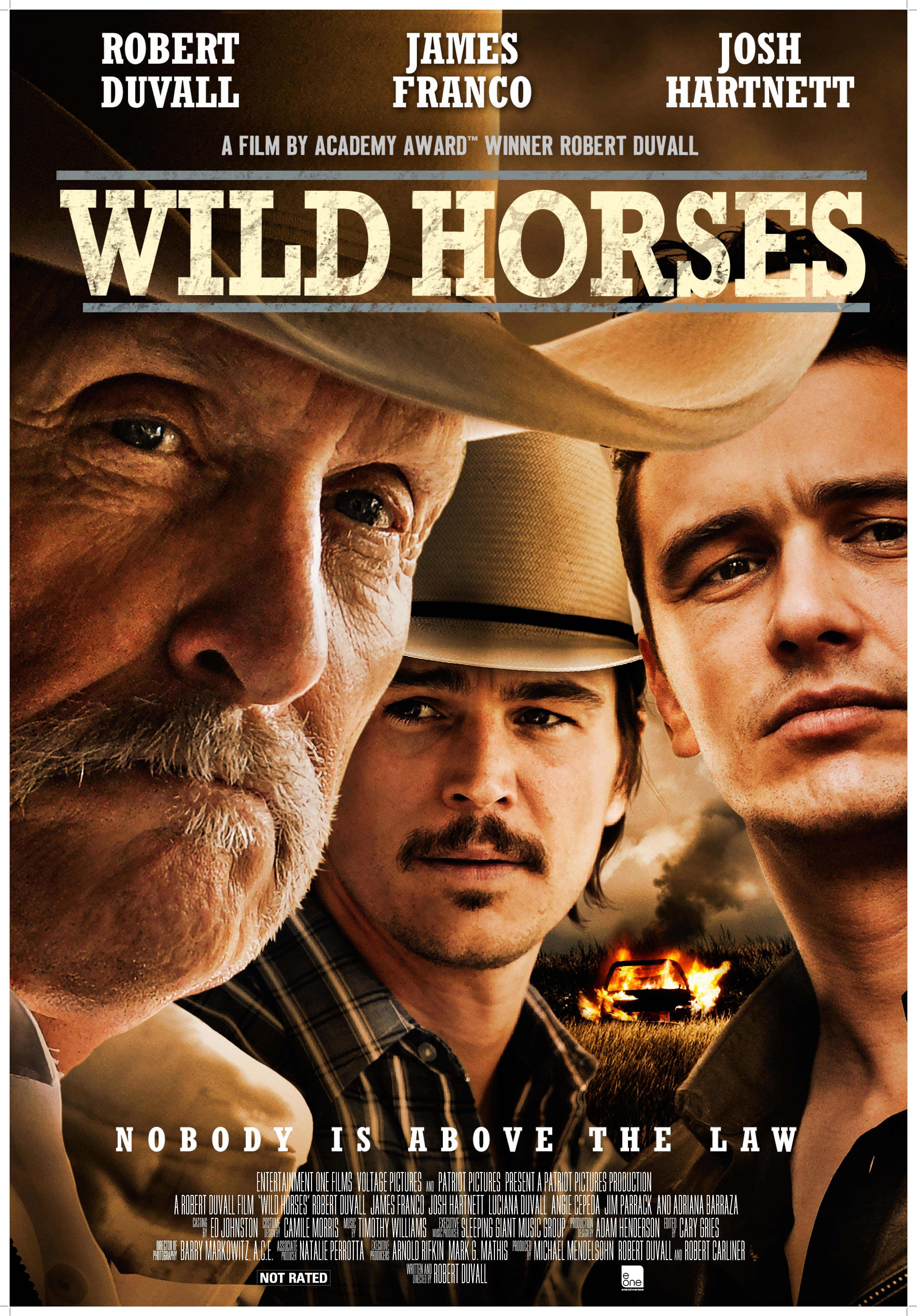 into the wild full movie download worldfree4u