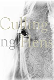 Culling Hens Poster