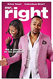 Mr. Right(2015) Poster - Movie Forum, Cast, Reviews