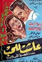 Ashat lil-hob