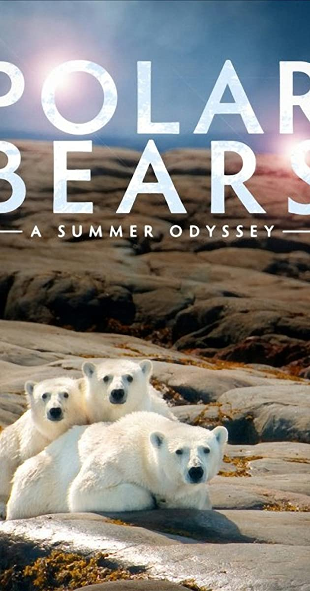 Subtitle of Polar Bears: A Summer Odyssey