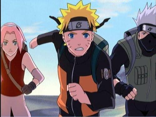 Naruto Shippuden: Complete Series