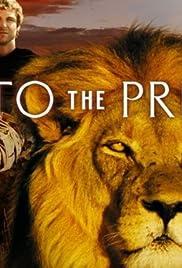 Into the Pride Poster - TV Show Forum, Cast, Reviews