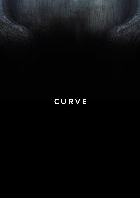 Anunturi Sebes - curve de