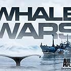 Whale Wars (2008)