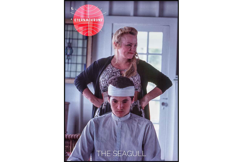 Seagull (2019)