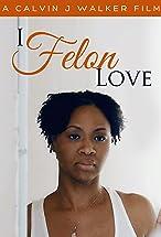 Primary image for I Felon Love