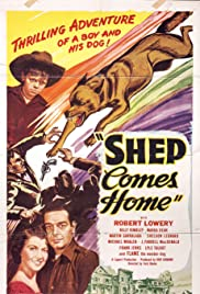 Shep Comes Home Poster