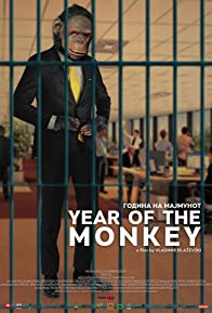 Primary photo for Year of the Monkey