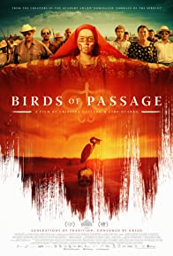 Primary photo for Birds of Passage