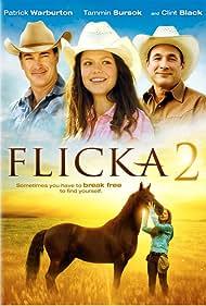 Flicka 2 (2010) Poster - Movie Forum, Cast, Reviews