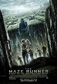 Primary photo for The Maze Runner