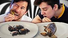 We Eat Bugs