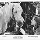 Eva Griffith in Ride a Wild Pony (1975)