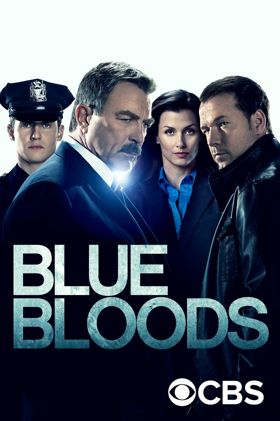 blue bloods by hook or by crook