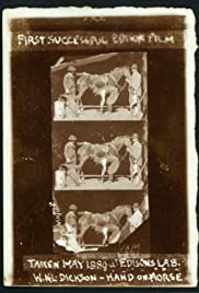 Horse Shoeing Poster