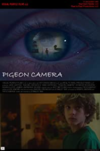 English movies videos download Pigeon Camera [WEB-DL]