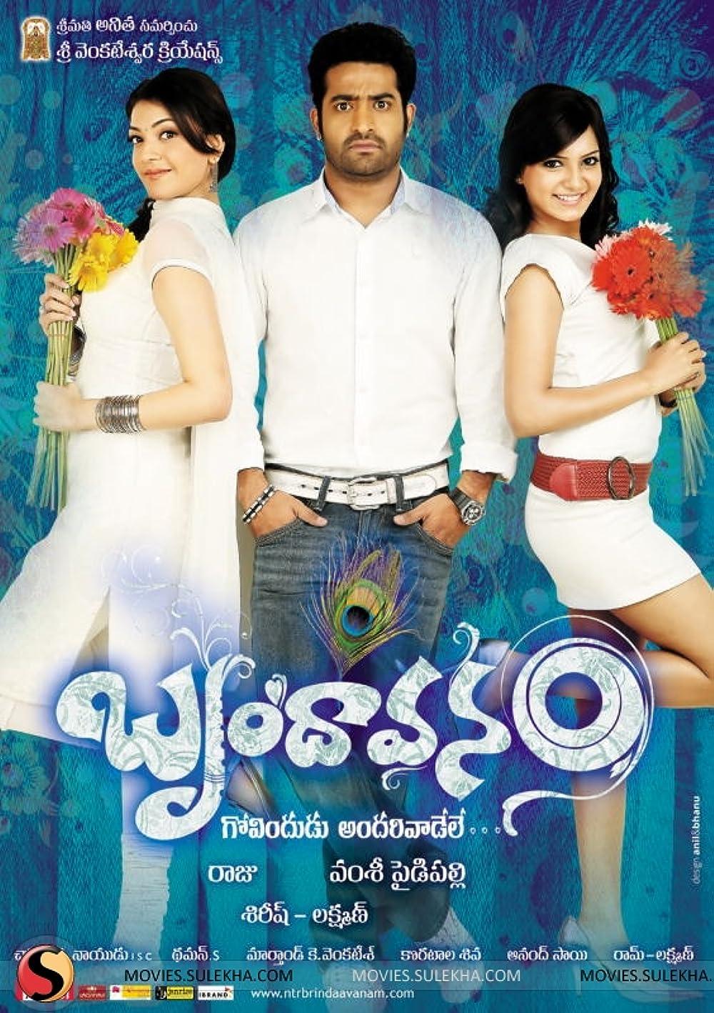 Brindaavanam (2010) South Hindi Movie UNCUT [Hindi – Telugu] HDRip 720p & 480p Download