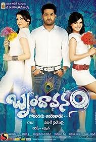 Brindaavanam (2010)