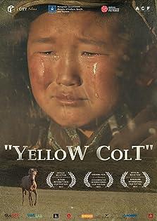 Yellow Colt (2013)