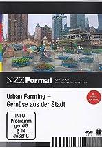 Urban Farming: Gemüse aus der Stadt
