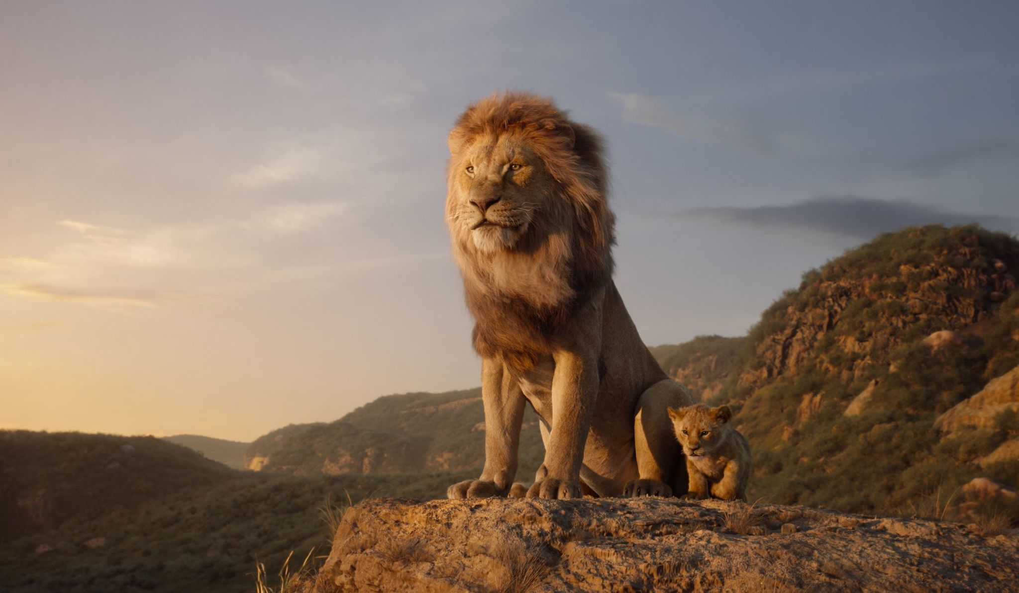The Lion King (2019) - Photo Gallery - IMDb