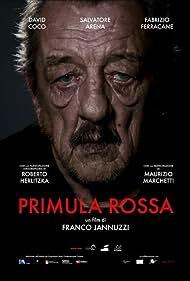 Primula Rossa (2018)