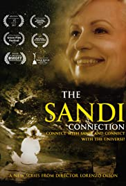 The Sandi Connection Poster