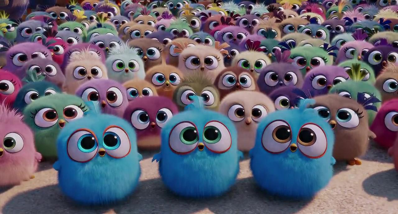 Angry Birds 2016 Photo Gallery Imdb