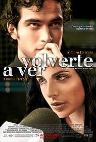 Volverte a ver (2008)
