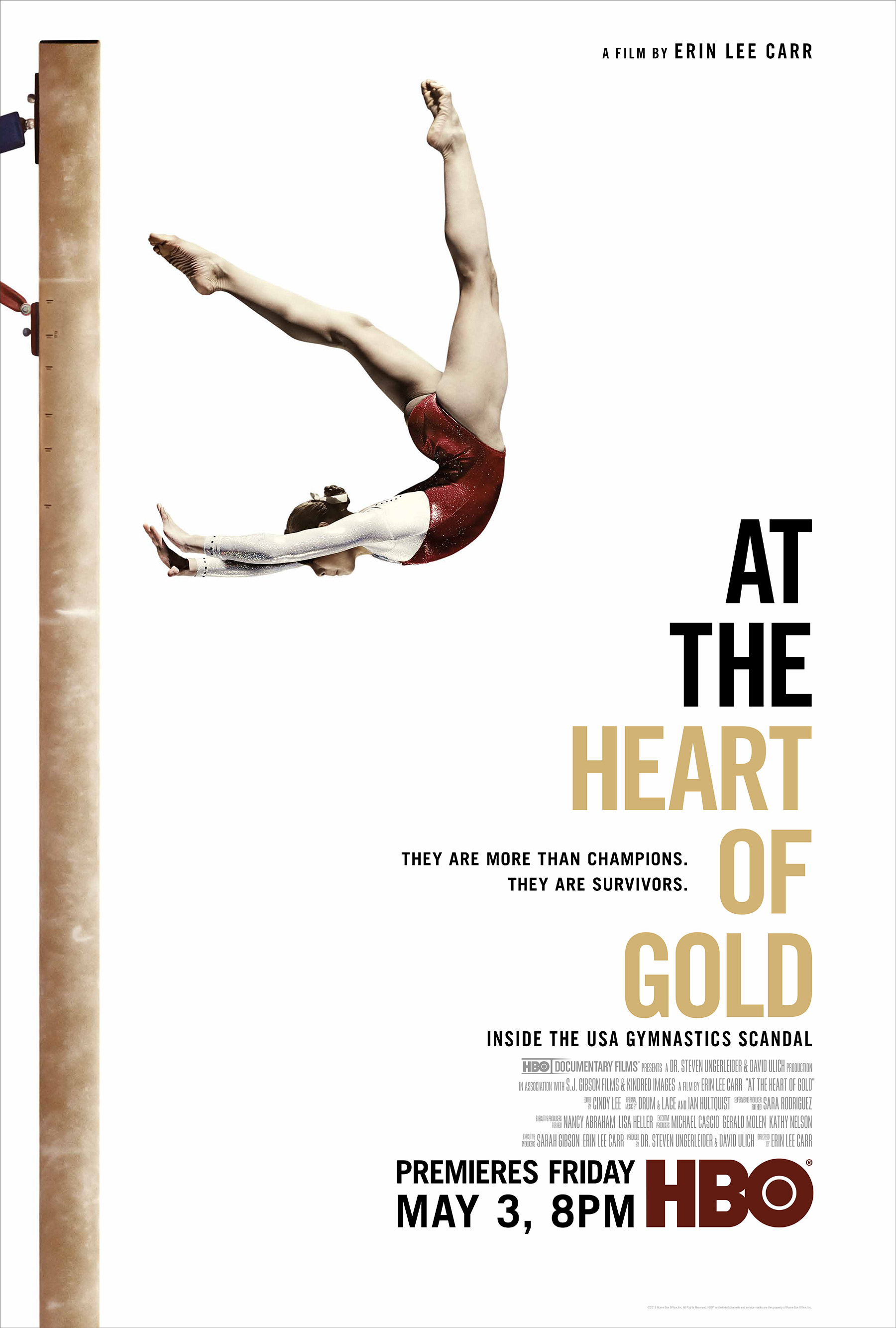 At the Heart of Gold: Inside the USA Gymnastics Scandal (2019) WEBRip 720p