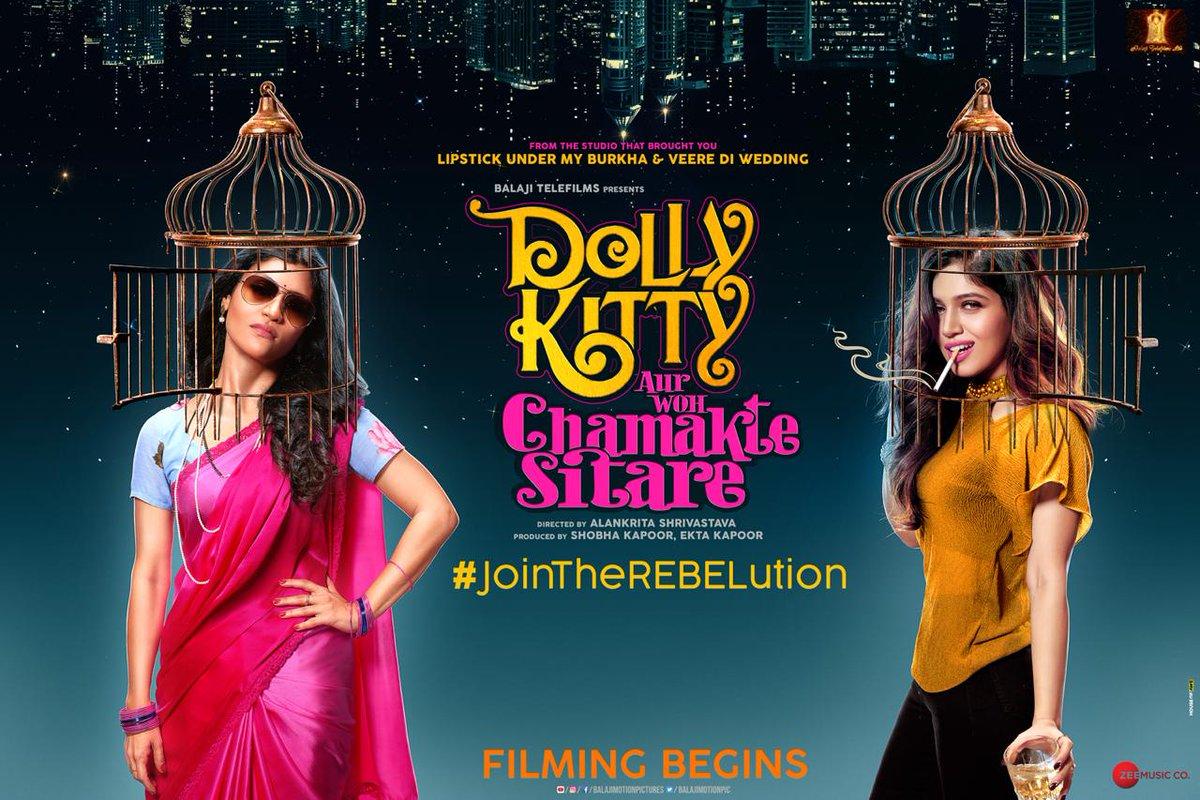 Dolly Kitty Aur Woh Chamakte Sitare 2020 banner HDMoviesFair
