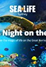 Day and Night on the Reef