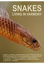 Snakes-Living in Harmony