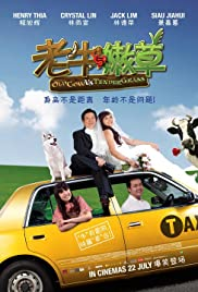 Old Cow Vs Tender Grass Poster