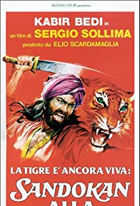Primary photo for The Tiger Is Still Alive: Sandokan to the Rescue